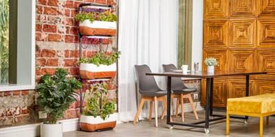 Kdaj je pravi čas za postavitev vrtne kuhinje