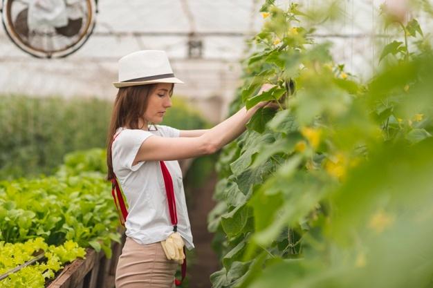 Napredna oprema za vrtnarje