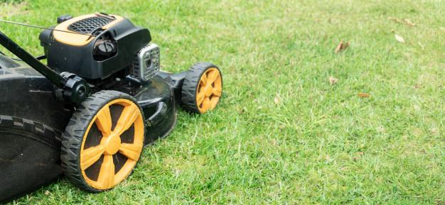 Motorna žaga Stihl akcija – več o ponudbi v spletni prodajalni