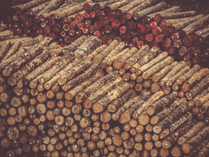 Drva so lahko cenejša kot peleti, a jih je težje dobaviti in skladiščiti.